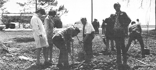 A belated but busy Arbor Day. Here (left to right) Rene Tracy, Nancy Lupo, Jacob Zouganelis, Quentin Kerns and Bob Hodge help to plant a tree in the Village