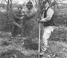 (L-R) J.Kalina, N.Smith, C.Winters putting trees at Wilson Street entrance